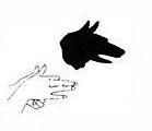 signe du renard